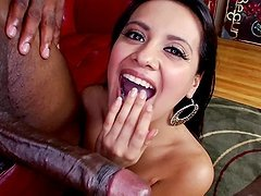 Mexican Booty gets damaged by that monster cock