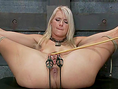 Lovely blonde gets her pussy tortured and toyed