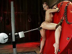 Babes Shows Her Hot Ass As A Fucking Machine Pounds Her Against A Wall