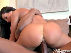 Lisa Ann Getting Banged By A Big Black Dick